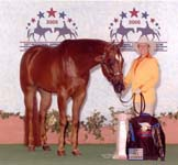 Judy Rich and Hit Invitation, 2005 Nationals Top 5 Showmanship