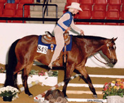 Rocky Top Quest, Sherri Tissing, Multiple World and National Top Honors in Trail and Showmanship